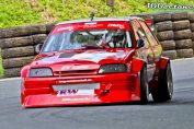Citroen ax kit car stance