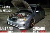 Mustang boss 302 Subaru wrx sti