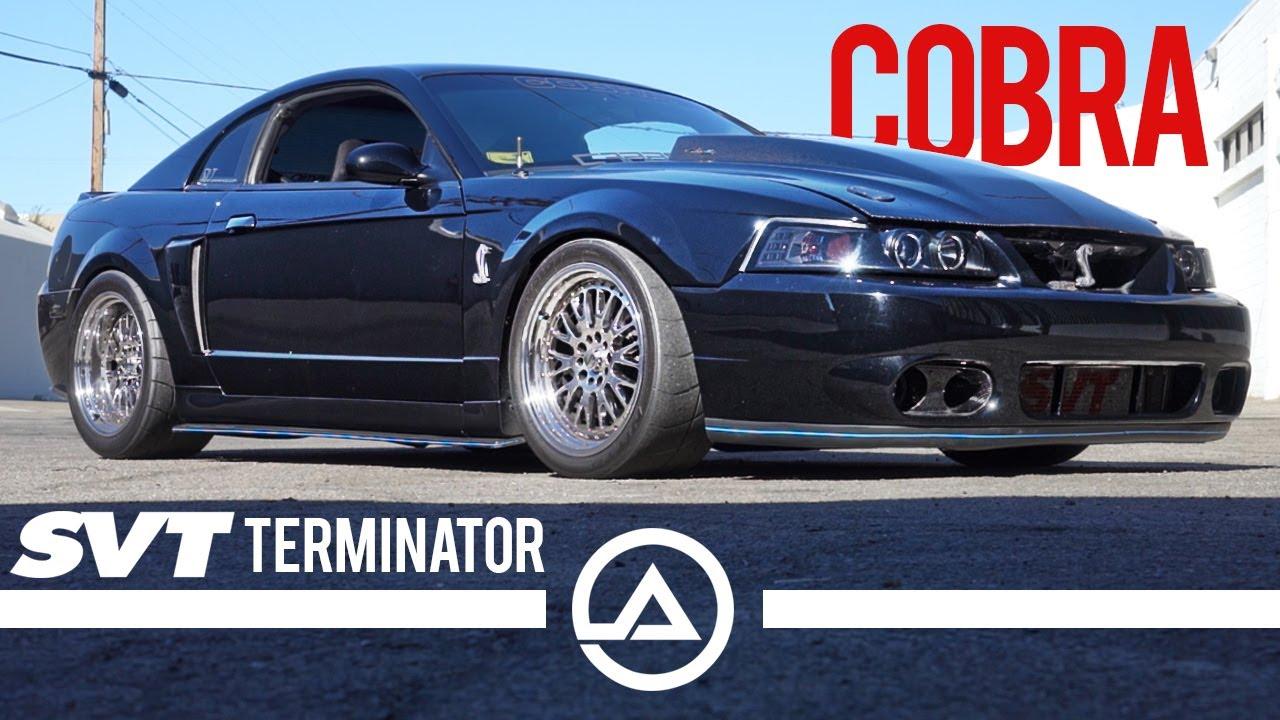 Terminator Cobra Instagram